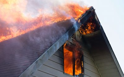 [Whitepaper] Wildfire: a growing risk to insurers