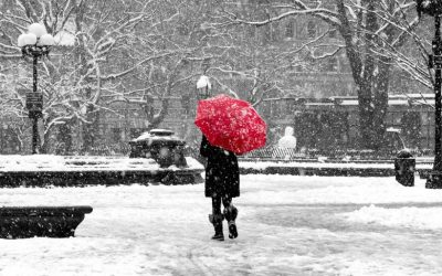 7 winter weather terms your claims adjusters should know