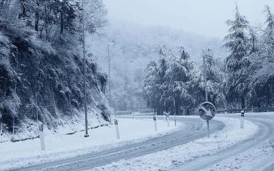 Deep freeze: the impact of winter storms on insurance carriers