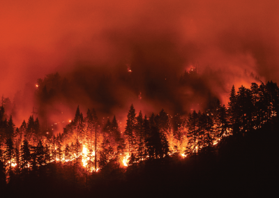 Understanding wildfire risk to write, renew and optimize insurance policies